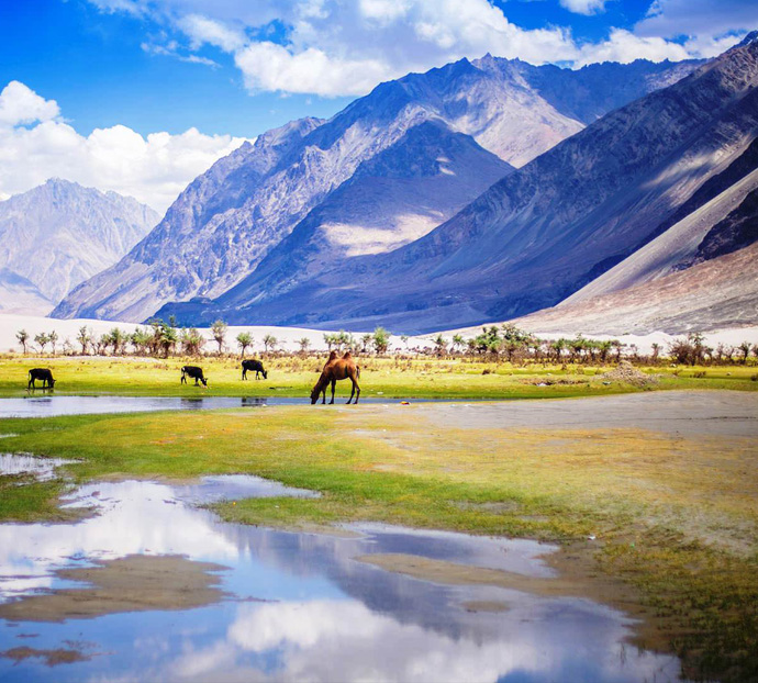 Lah Ladakh Holidays Packages